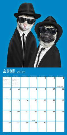 2015 Pets Rock Wall Calendar | Wayfair