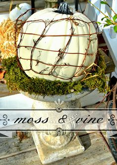 Down to Earth Style: Moss & Vine Pumpkin Urn
