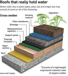Green roofs environmental benefits Green roofs can be advantageous for many reasons: Reduce heating and cooling Increase the roof life span by at least double Grow fruits, vegetables, and flowers Reduce run-off storm water Filter pollutants and CO2 out of the air Insulate for sound and heat Filter pollutants and heavy metals out of rainwater Increase wildlife habitat