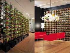 Joost Bakker's Vertical Garden : TreeHugger