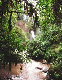 The Waterfall Gardens, Costa Rica, taken by ME! :) #JetsetterCurator