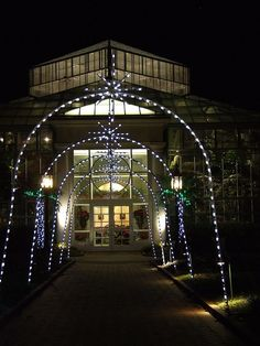 The Orchid Conservatory  During Holiday Lights at the Daniel Stowe Botanical Garden