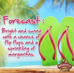 Forecast: Bright and sunny.....