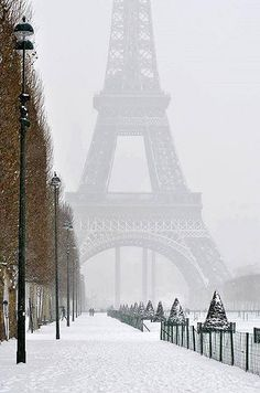 Eiffel Tower in wint