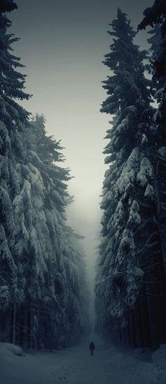 Solitude • photo: Jan Machata on 500px