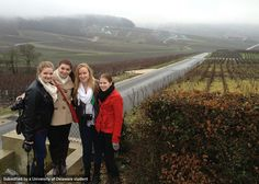 ART in Paris students Kristene, Lex, Kelly and Molly in a French vineyard