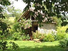 Garden Shed in French countryside, by Frances Schultz