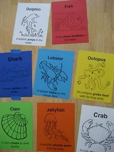 Ocean Animal Movement Cards- Creative Movement #elementary #music