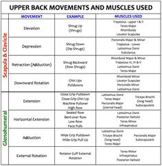 A strong upper back is vital to minimize shoulder joint and girdle injuries. Strengthening these areas can be done with proper balance of pushing and pulling. Here are workouts for you to follow.