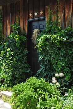 Climbing vines and charming garden tour eclecticallyvintage.com