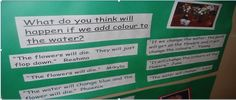 what does inquiry look like in kindergarten? - documentation ideas