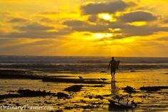 Surfer at sunset in San Diego