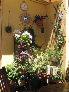 Paisagismo on pinterest courtyards open house and ideas - Como decorar el patio ...