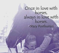 Once in love with horses, always in love with horses :)