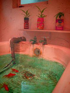 Fish in bath