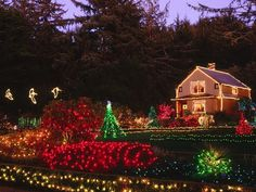 Christmas outside decorations pictures | christmas decorating with outdoor christmas lights lt holidays ...