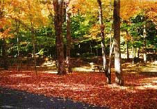 Woodland Valley Campground in the Catskills - it has very good reviews