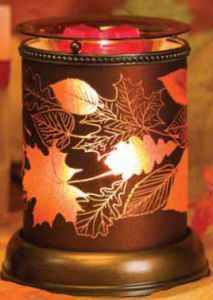 AUTUMN GLOW ~ Available while supplies last in the Harvest 2014 Brochure ORDER ONLINE ~ SHIPS DIRECT!!! https://spollreisz.scentsy.us