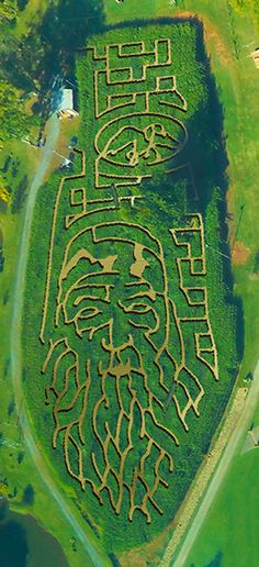 The 2013 Rock Ranch Corn Maze features Duck Commander Phil Robertson!