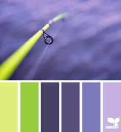 color caught