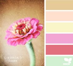 color palette- love the soft yellow.