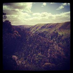 #LP, #Travel Image taken by @daveg1983 #Australia, #Melbourne, #werribeegorgestatepark