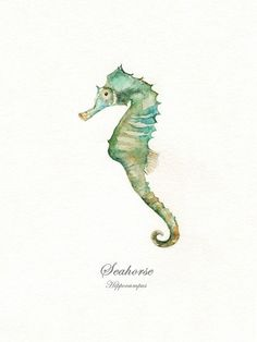 Seahorse With Words/ watercolor print/teal/light by kellybermudez, $30.00