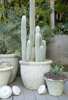 Amphoral pots made in Vietnam via Flora Grubb Gardens