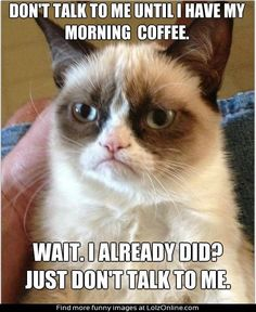 Don't talk to me until I have my morning coffee. Wait. I already did? Just don't talk to me.