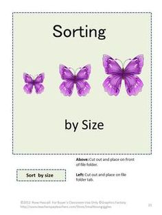Bugs and Butterflies Printable File Folder Games PK-K or S