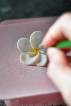 How to make a fondant frangipani flower - cake decorating tutorial