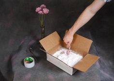 Preserving flowers with Borax » Curbly | DIY Design Community