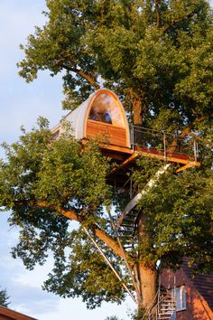 Modern treehouse wrapped around an oak tree by architect Andreas Wenning of German firm baumraum