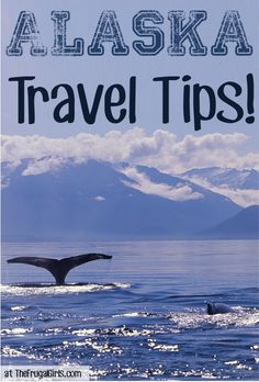 12 Fun Things to See and Do in Alaska! ~ from TheFrugalGirls.com #alaska #travel