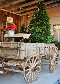 Christmas tree in old wagon