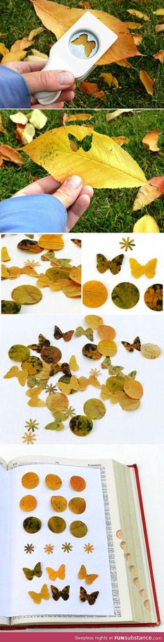 fall leaves, autumn leaves, wedding confetti, paper punch, autumn art, punch art, leaf art, cut outs, autumn crafts