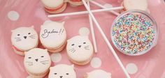 macarons chat cat french france <3
