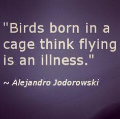 #quote #alejandrojodorowski