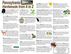 Used this for Pennsylvania Geography  Social Studies - Fun activity - Free 2 page printable PDF
