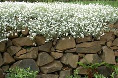 Cantero de jardin con piedras apiladas