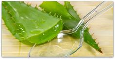 Top 8 Superfoods that Can Heal your Entire Body - LA Healthy Living
