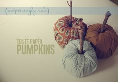 Toilet paper Pumpkins. Fun and easy craft to do with the kiddos.
