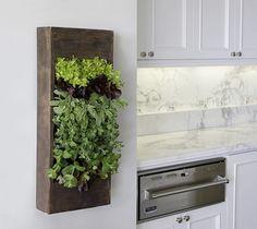 Vertical herb garden in kitchen!