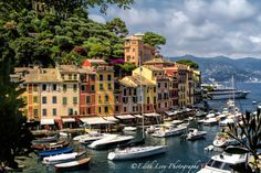 Portofino, Italy www.edithlevyphotography.com