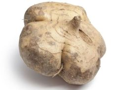 Health Benefits of Jicama | Organic Facts