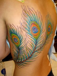 Peacock Feathers On Back