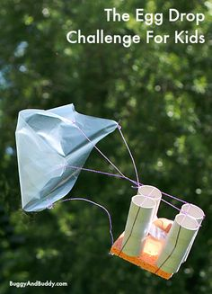 This year's egg drop challenge w/ FREE planning printable! (The Egg Drop Challenge~ Buggy and Buddy)