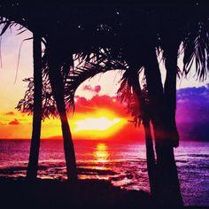 Maui Sunsets.