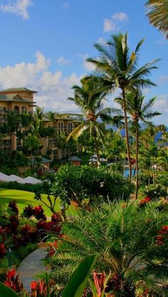 Resort, Hotels, Hawaii, Archipelago, United States