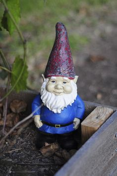 every garden needs a gnome... at least for the grandkids!